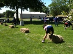 Walla Walla 2012 Summer Olympics. The hay bail hand spring is much harder than it looks. The kids had a blast!